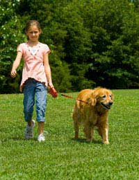 Exercise And Pets Health Benefits Of Pet